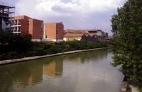 IUSS College