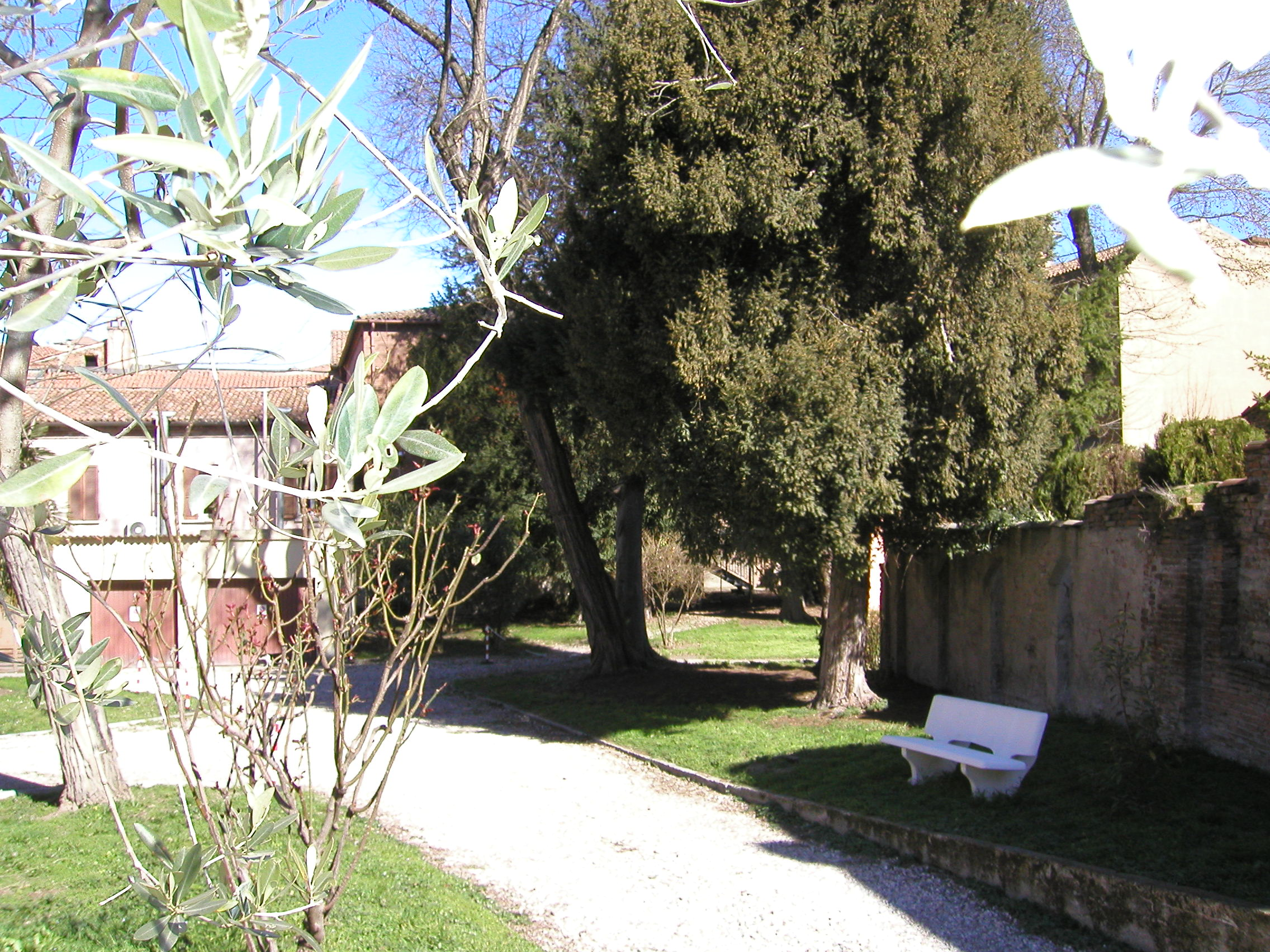 The garden (1)